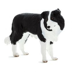 Mojo 387203 - Pies rasy Border Collie